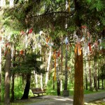 Ленточки на деревьях