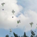 Запуск шариков
