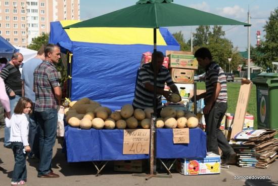 Никитская ярмарка в Домодедово