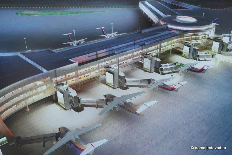аэропорта Домодедово в
