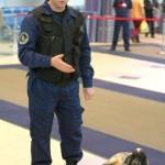 Полиция Домодедово объявляет набор в Центр кинологической службы