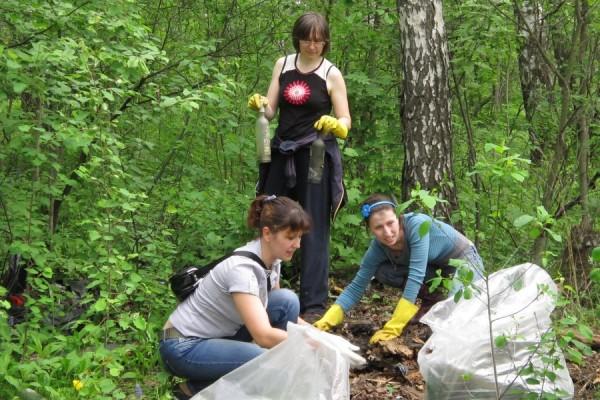 Уборка мусора в березовой роще в Домодедово
