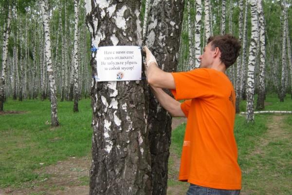 Таблички в лесу Домодедово