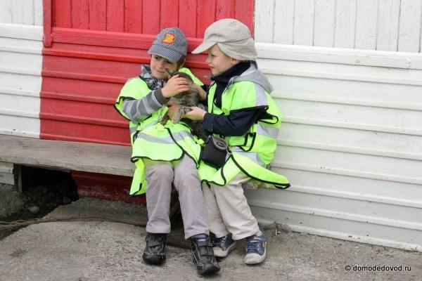 Детский споттинг в аэропорту Домодедово