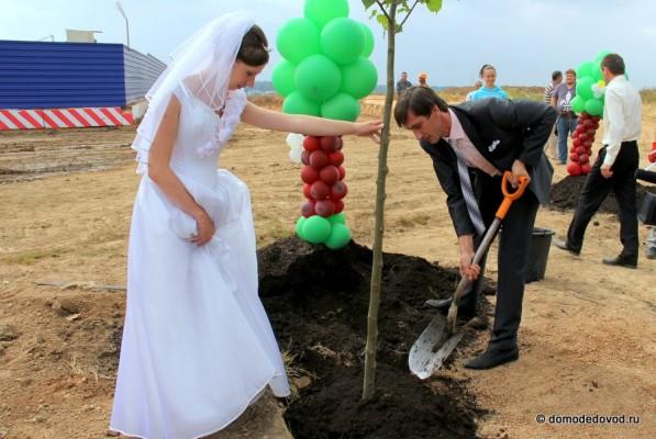 Молодожены сажают дерево на Аллее профессий в Новом Домодедово в 2012 году