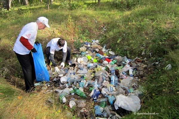 Свалка мусора в лесу около села Никитское