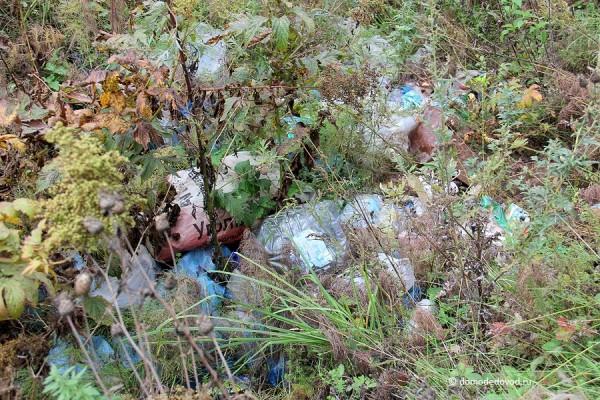 Куча мусора в лесу около Никитского