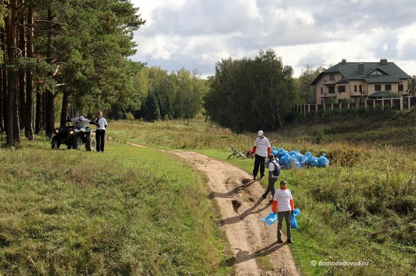 Уборка мусора в лесу около Никитского