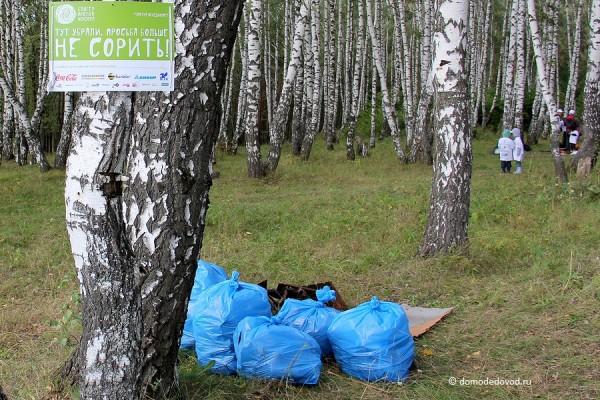 Уборка мусора в Домодедово
