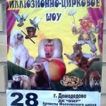 Афиша циркового шоу в ДК Мир