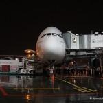 Из Домодедово будет летать еще один рейс на Airbus A380
