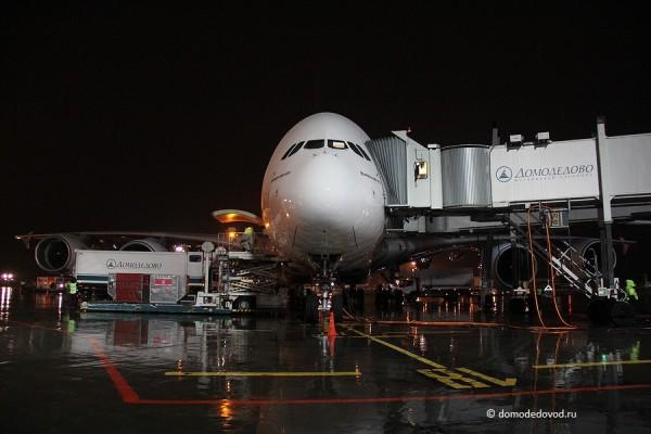 Airbus A380 в аэропорту Домодедово
