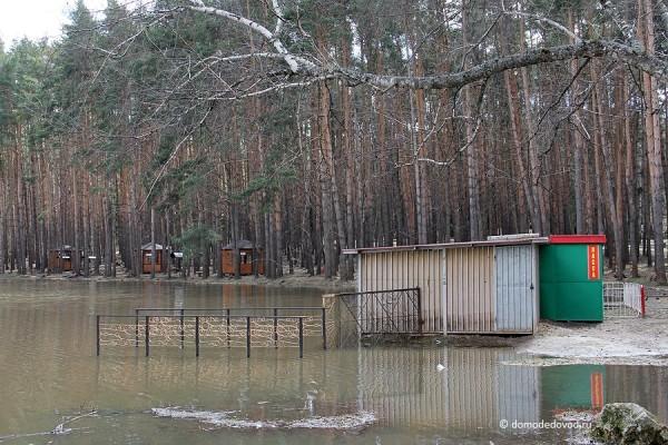 Парк культуры и отдыха «Елочки» (9)