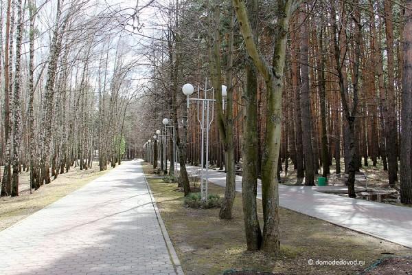 Парк культуры и отдыха «Елочки» (11)