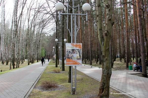 Реклама на аллее в парке Ёлочки