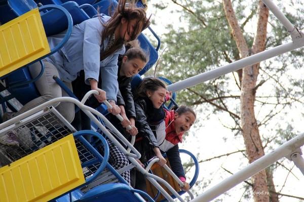 park-yolochki-0960