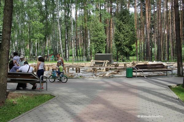 Парк Ёлочки в городе Домодедово5132