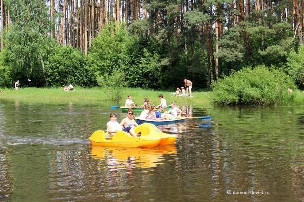 Парк Ёлочки в городе Домодедово5148