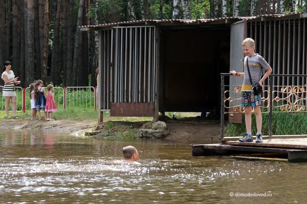 Парк Ёлочки в городе Домодедово5158