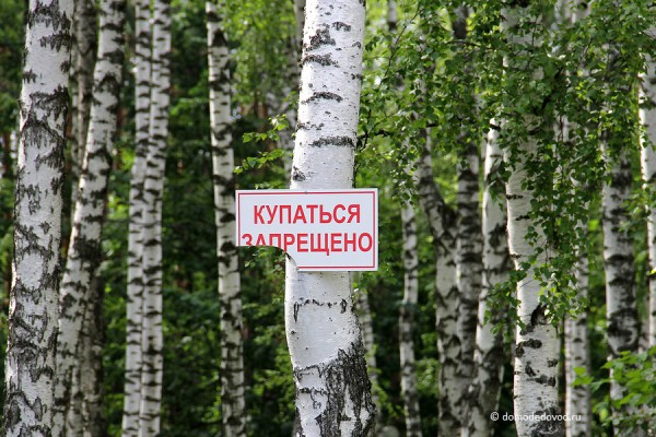 Парк Ёлочки в городе Домодедово5182