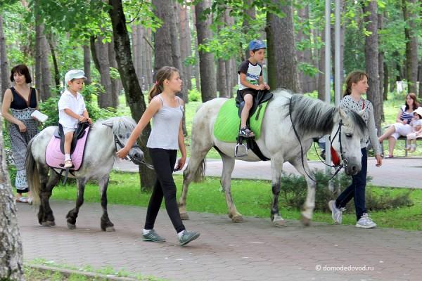 Парк Ёлочки в городе Домодедово5201