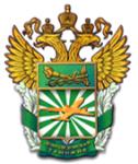 Домодедовская таможня