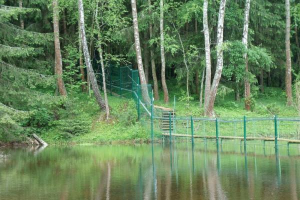Река Злодейка и забор