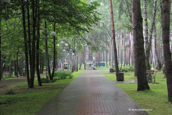 park-yolochki-0544