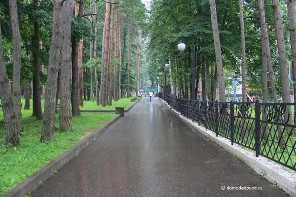park-yolochki-0558