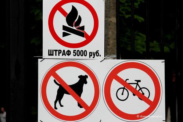 park-yolochki-0562