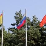 Флаги Домодедово, России и Московской области