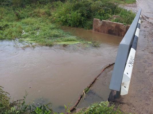 Мост в деревне Буняково