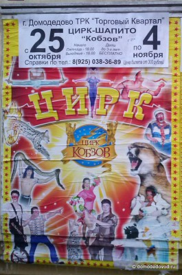 Афиша цирка