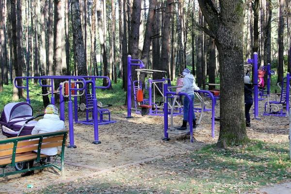 Тренажеры в парке Ёлочки
