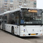 Автобус Голаз Домодедово