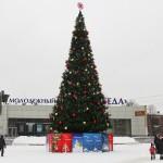 Главную ёлку страны срубят в Домодедово