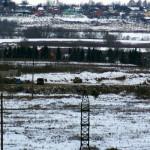 Свалка «Софьи Луизы» в Домодедово продолжает работать?