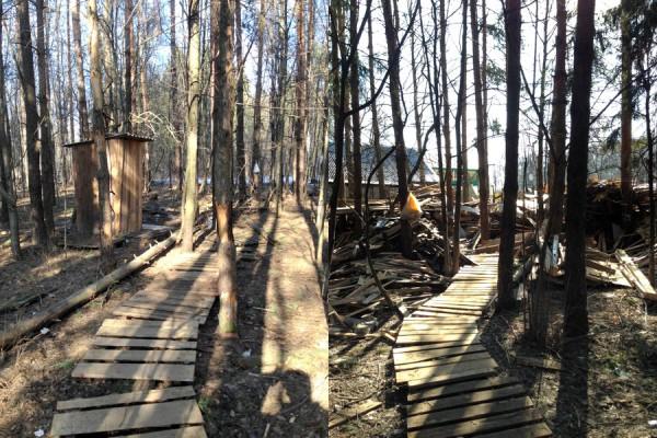 Госадмтехнадзор: лес - двойной удар