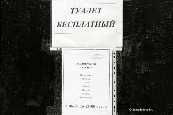Туалет в парке Ёлочки. Бесплатный