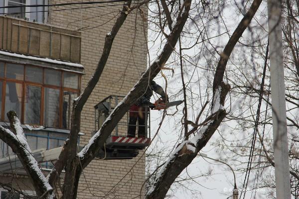 Спил деревьев на Советской улице в Домодедово