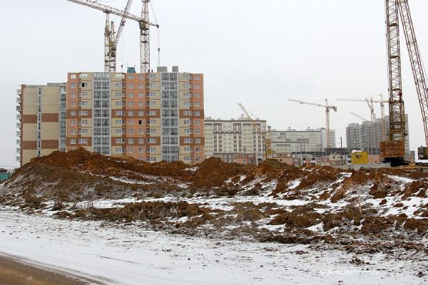 yuzhnoe-domodedovo-020314-14