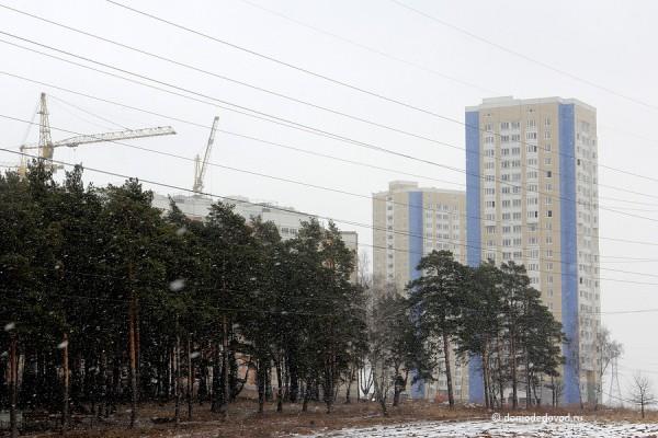yuzhnoe-domodedovo-020314-19