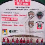 Футбол Домодедово