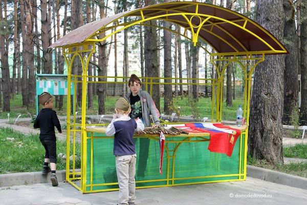Парк Ёлочки в Домодедово (2)