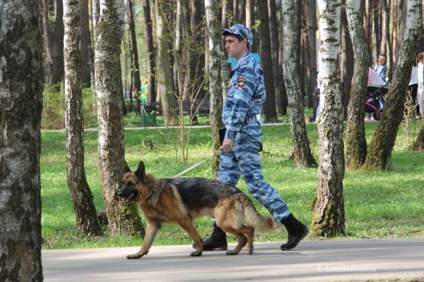 Парк Ёлочки в Домодедово (8)