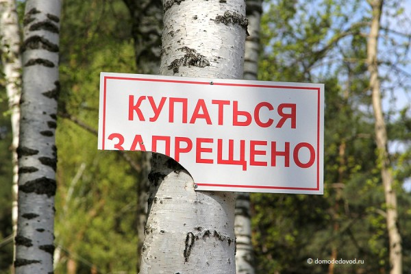 Парк Ёлочки в Домодедово (10)