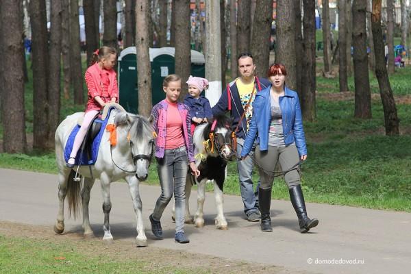Парк Ёлочки в Домодедово (19)