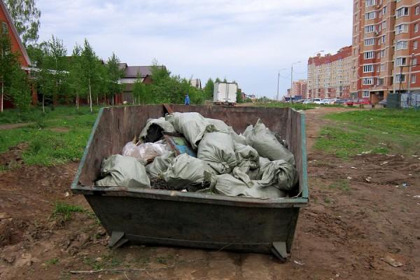 Контейнер с мусором из леса