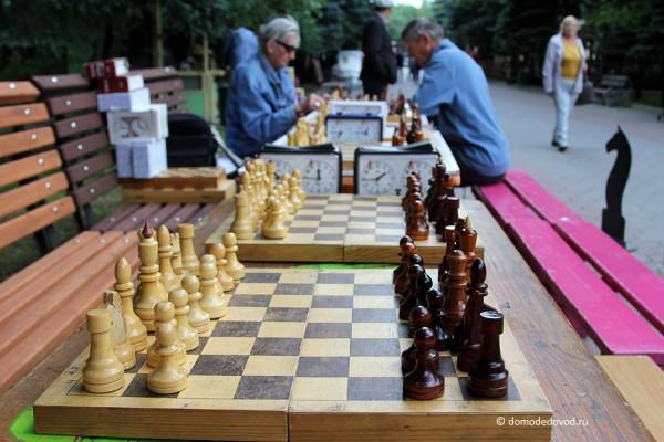 Шахматисты в парке Ёлочки