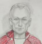 Портрет предполагаемого преступника. Lifenews.ru